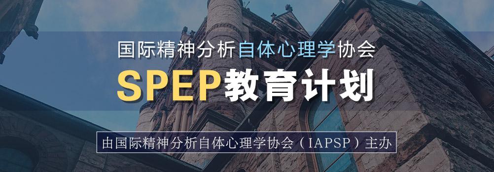 国际精神分析自体心理学协会SPEP教育计划