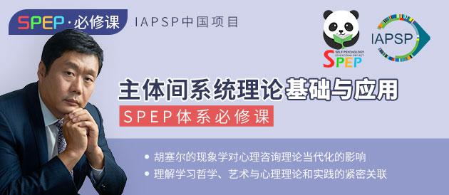 SPEP体系必修课-主体间系统理论基础与应用